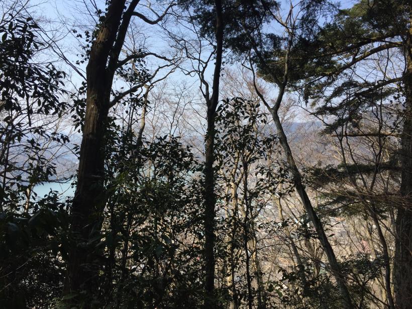 arashiyama47.jpg