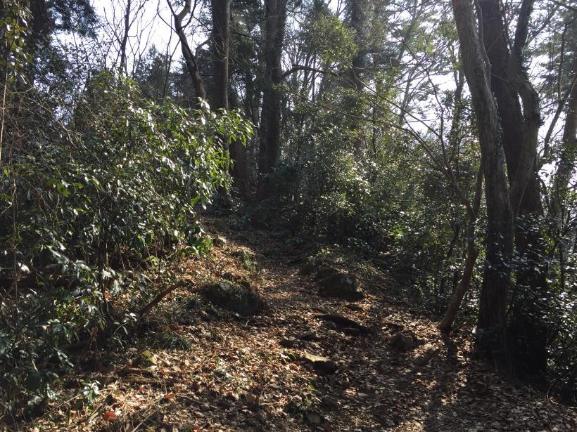 arashiyama48.jpg