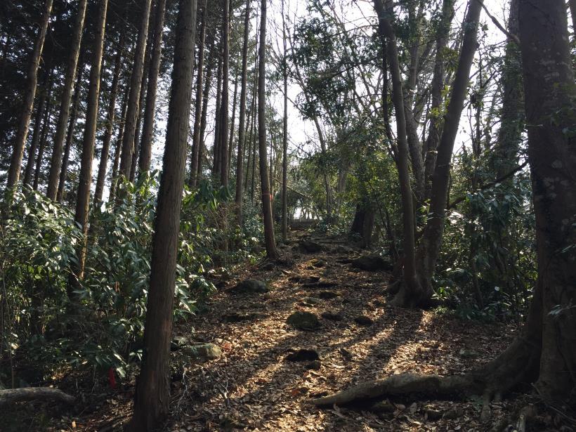arashiyama51.jpg