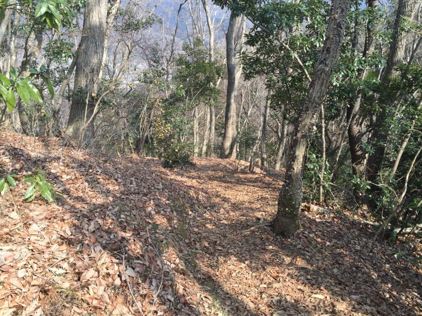 arashiyama65.jpg