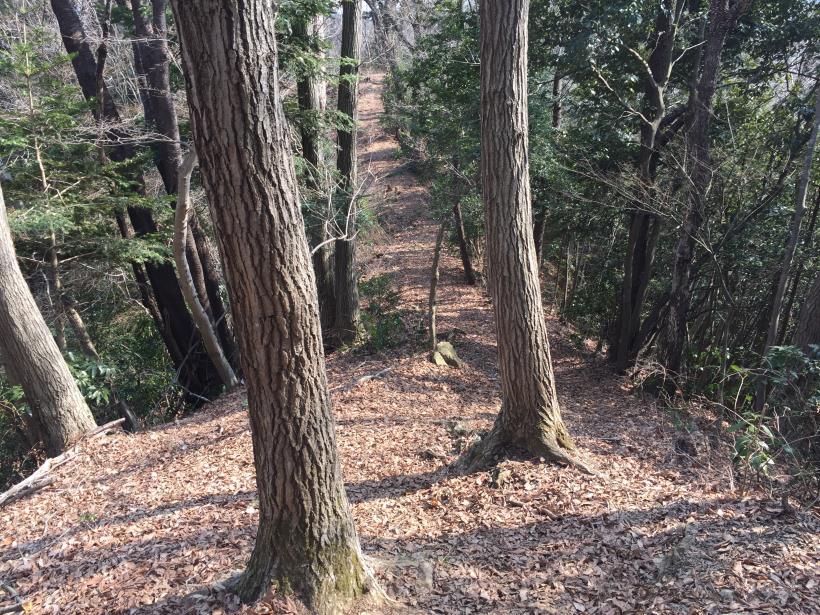 arashiyama66.jpg
