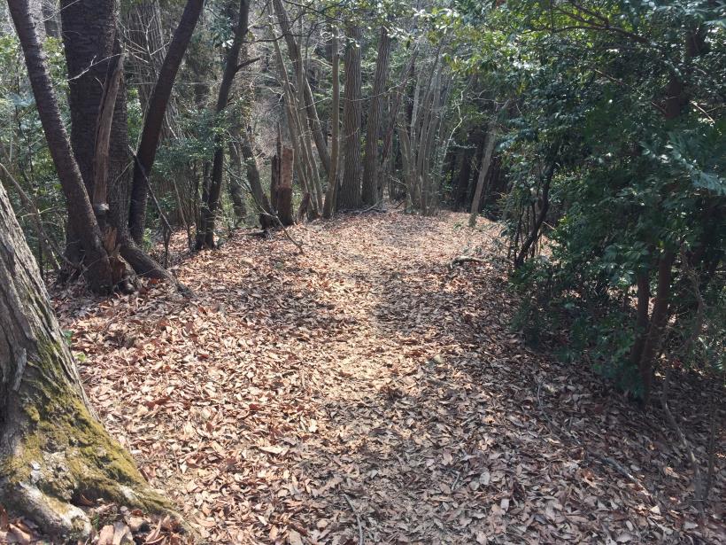 arashiyama67.jpg
