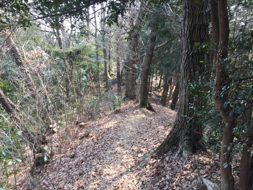 arashiyama68.jpg