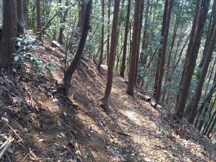 arashiyama71.jpg