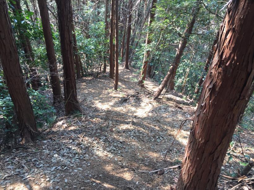 arashiyama77.jpg