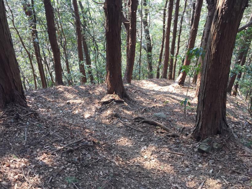 arashiyama78.jpg