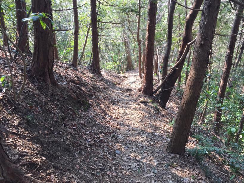 arashiyama79.jpg