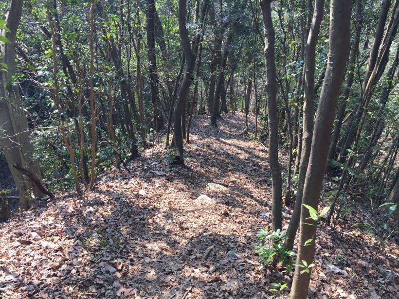 arashiyama82.jpg