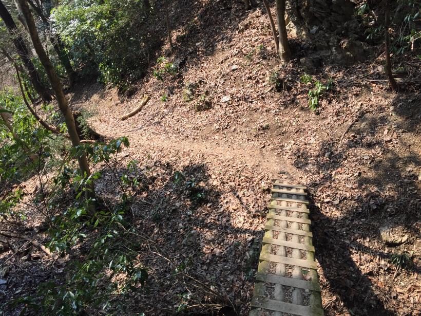 arashiyama86.jpg