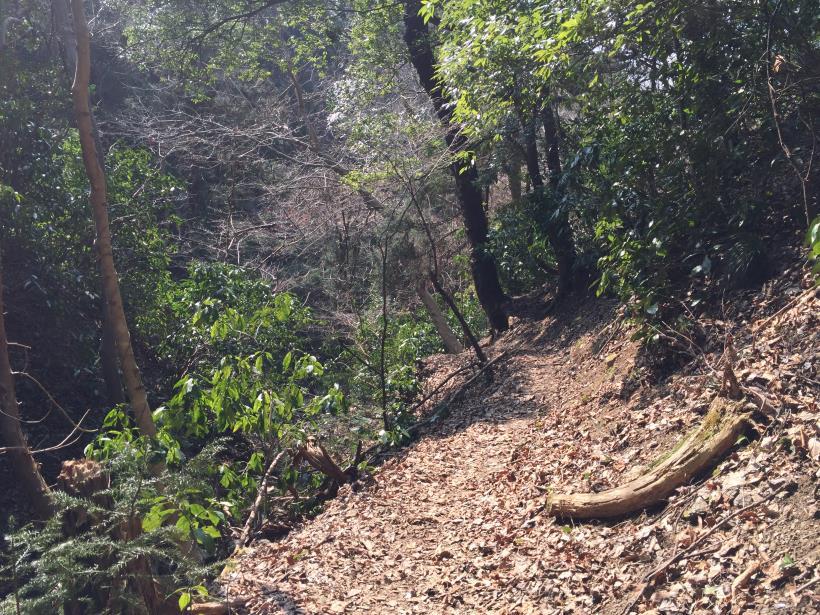 arashiyama87.jpg