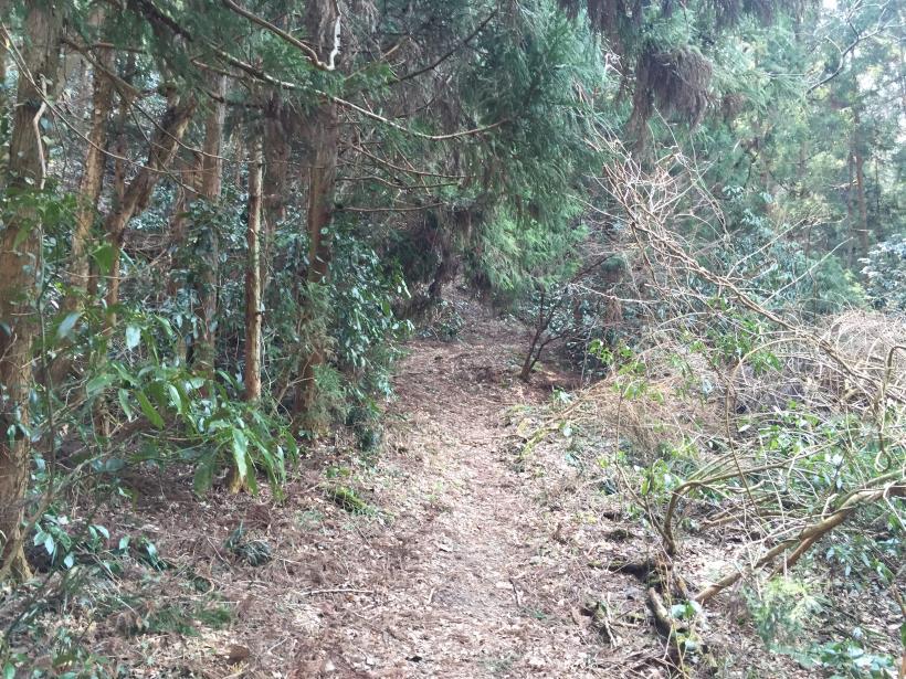 arashiyama93.jpg