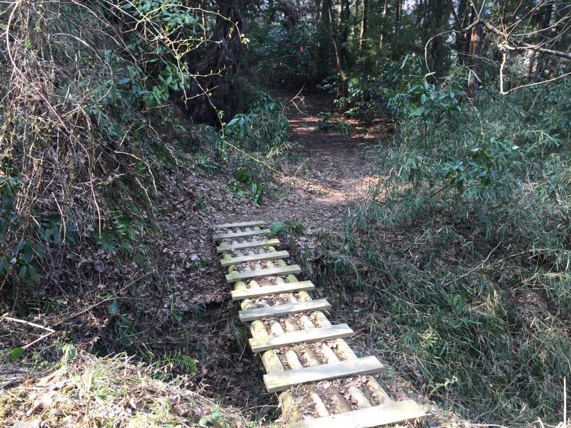 arashiyama96.jpg