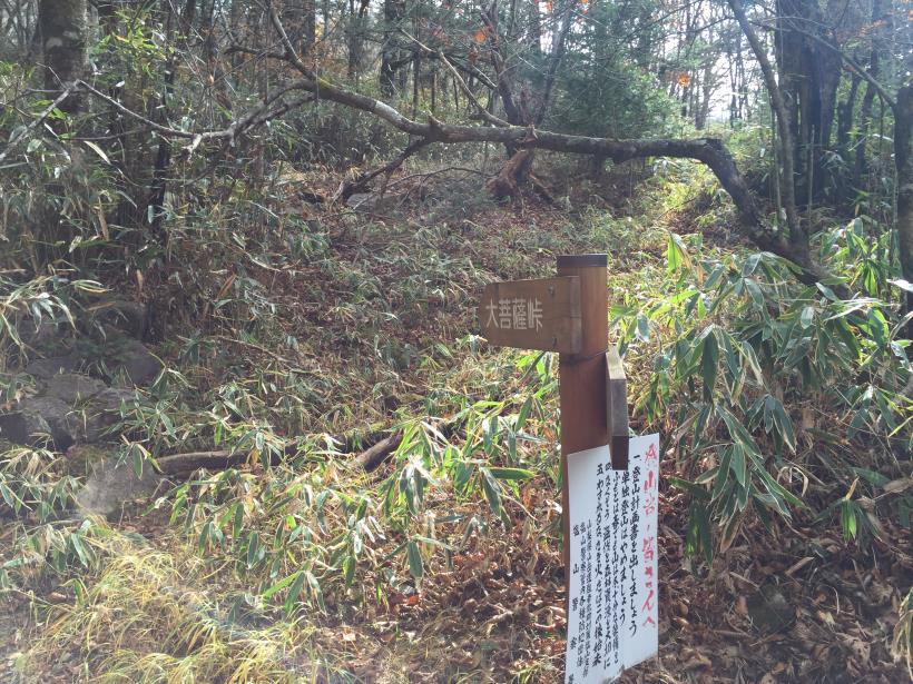 daibosatu45.jpg