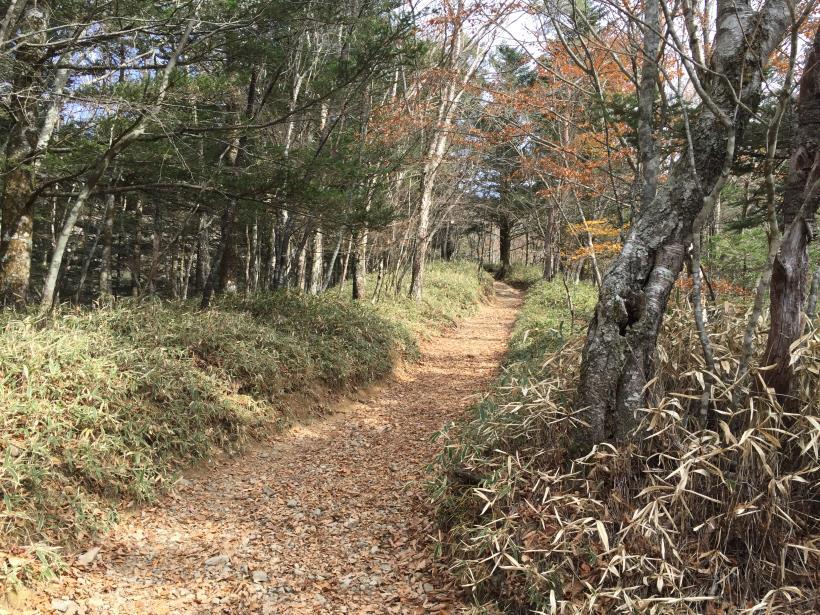daibosatu54.jpg