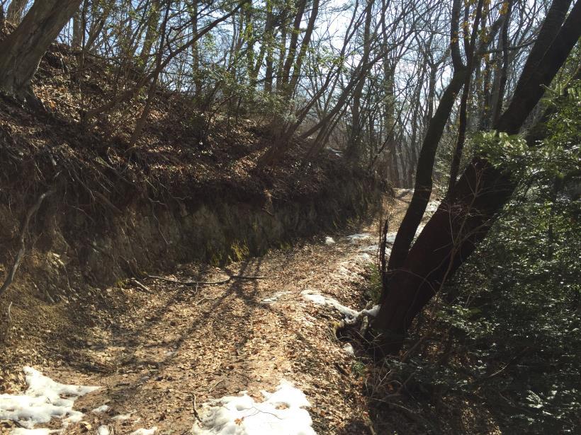 hachiokayama46.jpg