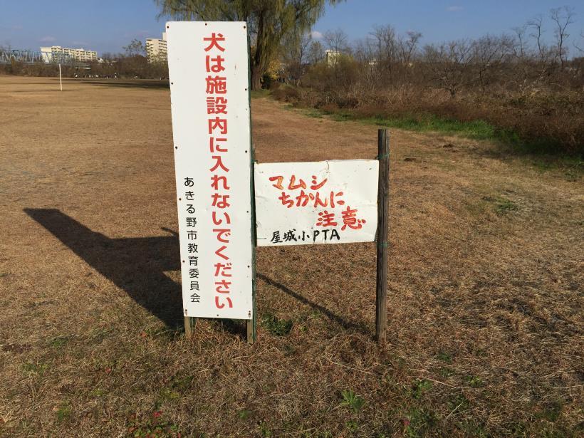 katsumineyama184.jpg