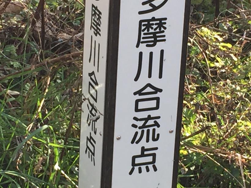 katsumineyama193.jpg