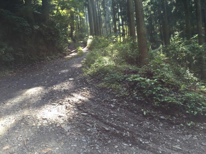 kosakashimisouha128.jpg
