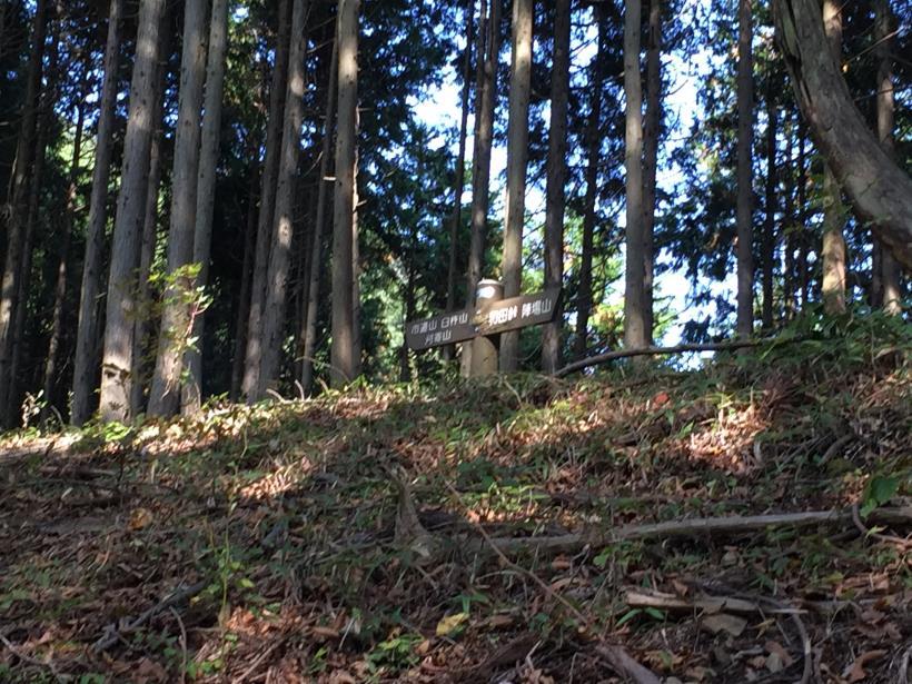 kosakashimisouha215.jpg
