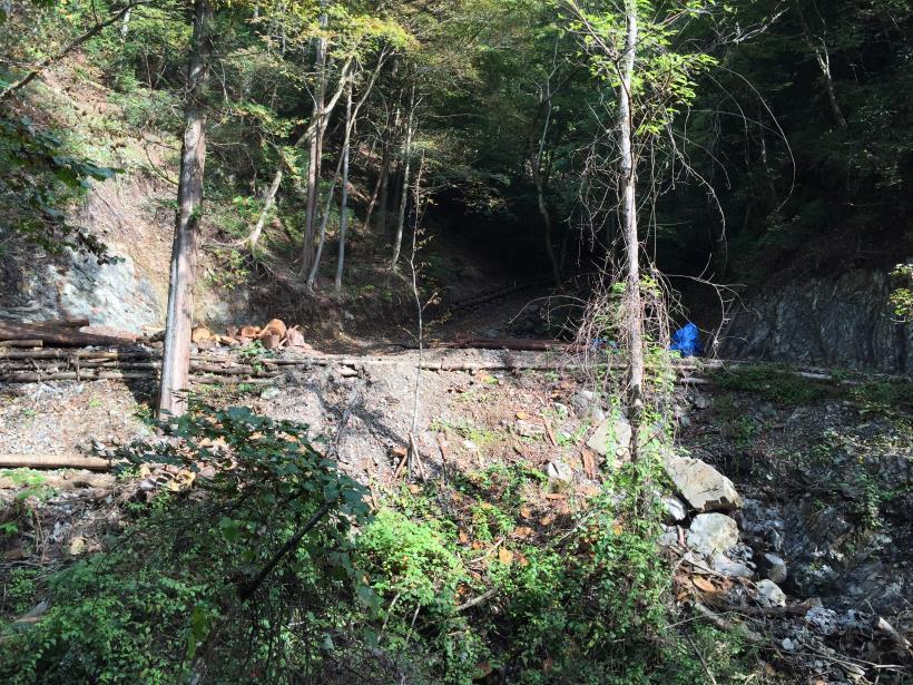 kosakashimisouha41.jpg