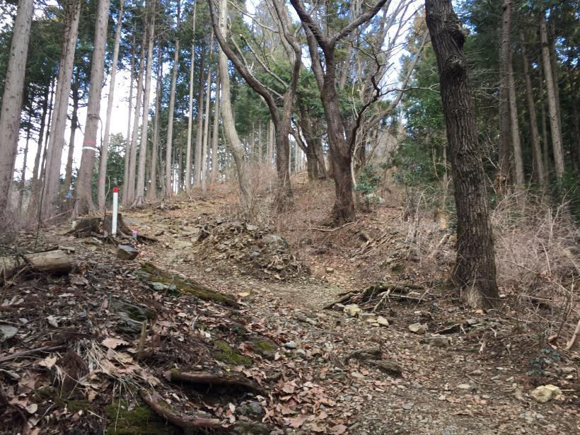 naramotomyouou136.jpg