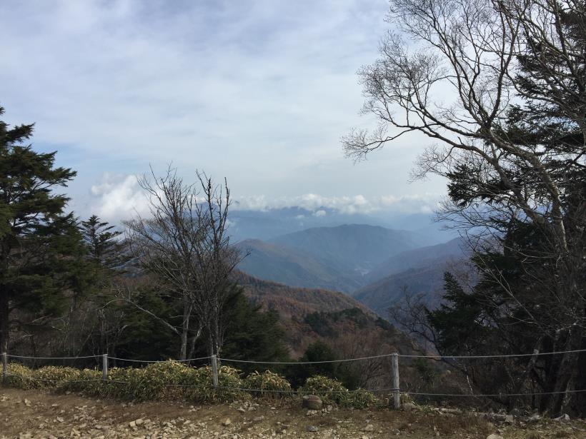 oyashirazunokashira04.jpg
