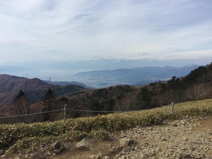 oyashirazunokashira12.jpg