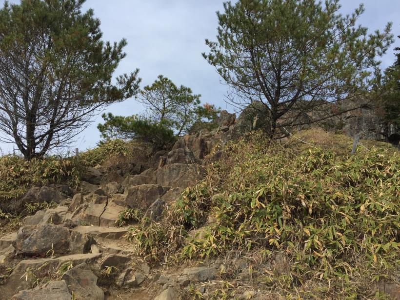 oyashirazunokashira20.jpg