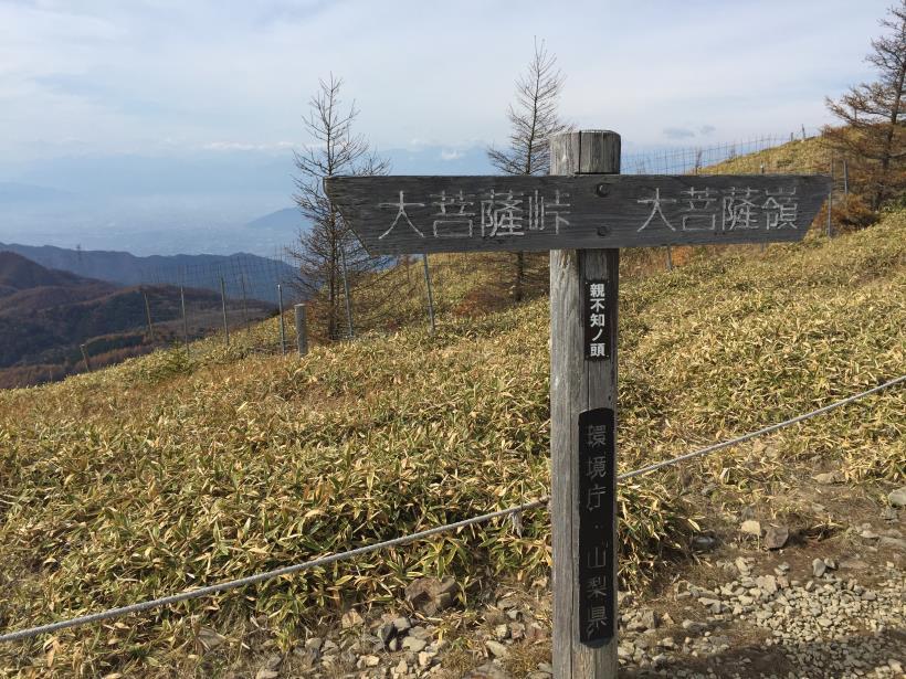 oyashirazunokashira27.jpg