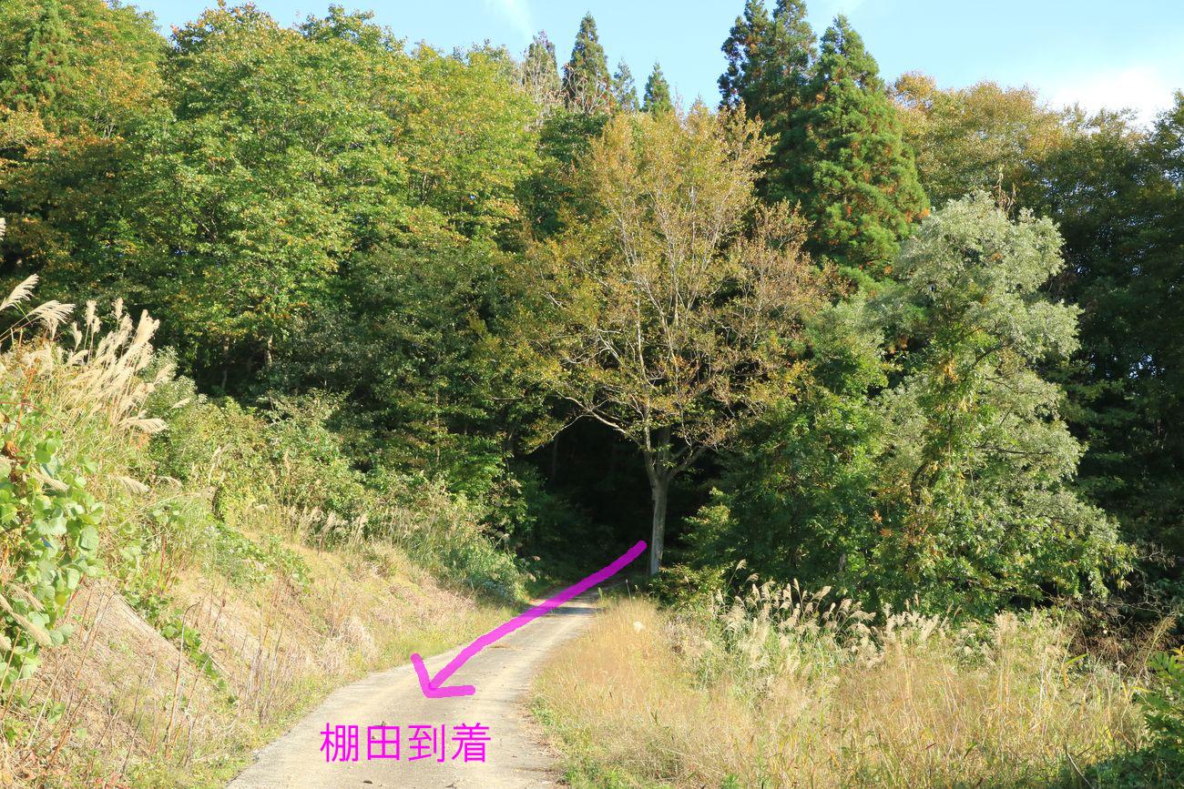 ●S行き方F2015・10・15M・バ大荒戸_66