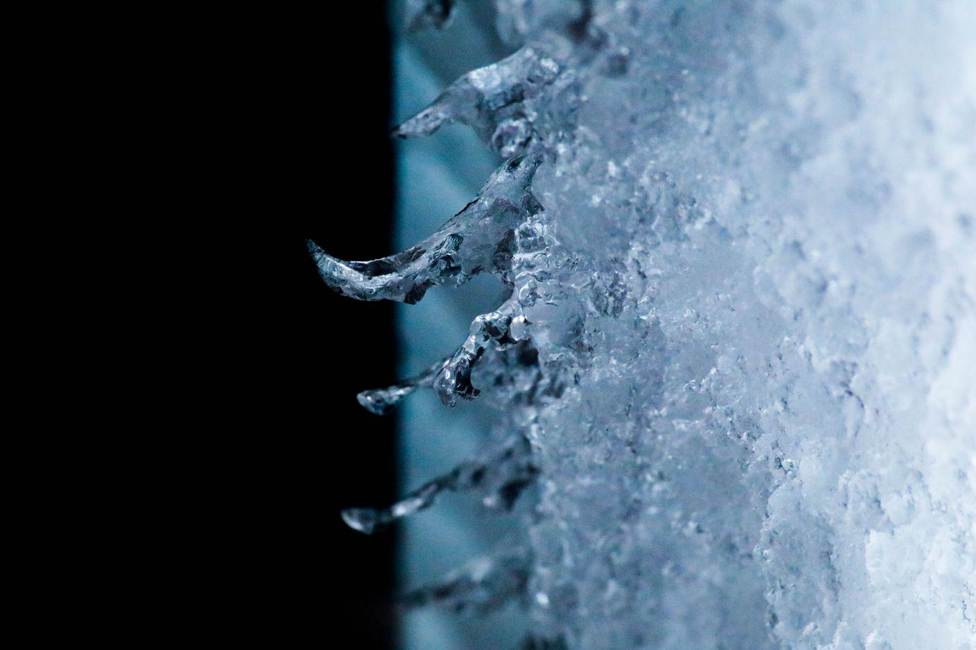 ●S2016・1・26M雪_31青2 (1 - 1)