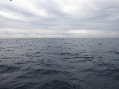 02-03 今日の海