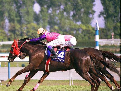 【競馬】武豊が一番好きな馬はディープじゃなくてマーベラスサンデー