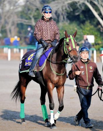 【競馬】ルージュバック、初のトレセン調整  大竹師「これまでできなかったこと」