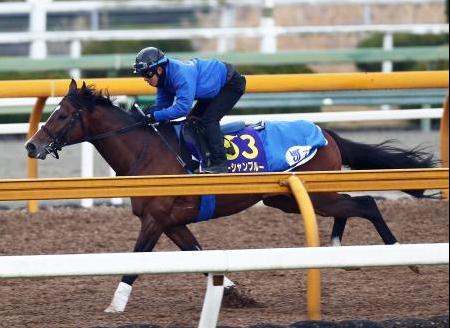【有馬記念】オーシャンブルーの鞍上は石川に決定!