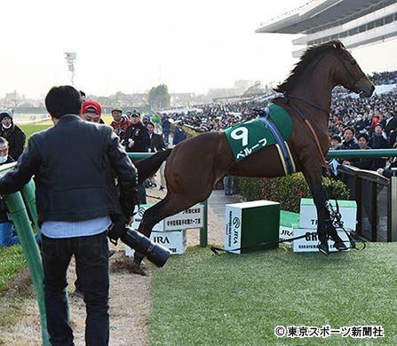 【競馬】ベルーフの放馬が池江のおっちょこちょいでワロタ