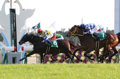 【競馬】ミルコデムーロとかいうJRA騎手www