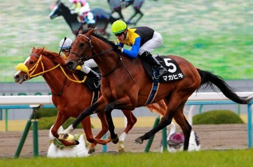 【競馬】若駒S:マカヒキ