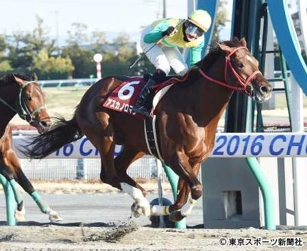 【東海S】ロワジャルダン横山和「勝った馬が強かった」