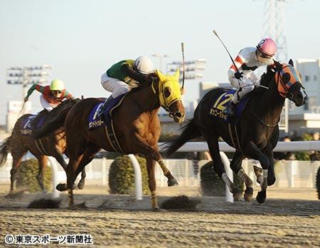 【競馬】ホッコータルマエ、フェブラリーS回避でドバイWC直行