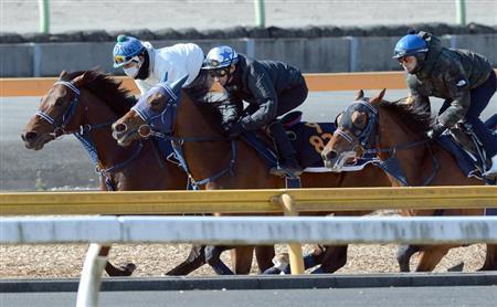【競馬】有力馬の乗り替わりのほとんどが横山典弘なんだが