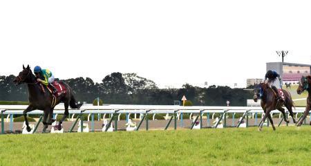 【競馬】ワンアンドオンリー内田「馬の状態はすごくよかった。完璧に近かった」
