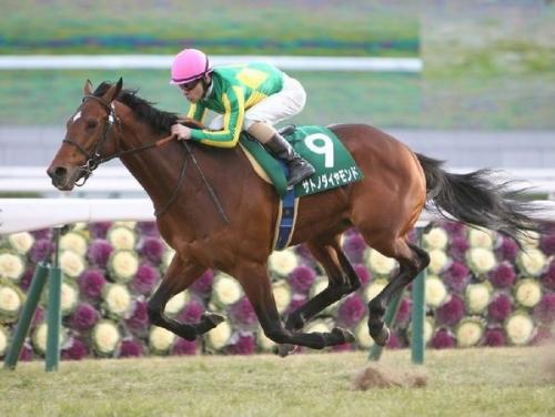 【競馬】サトノダイヤモンドって結局歴代名馬のどれ級?