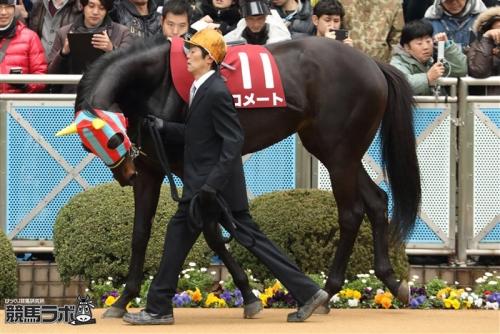 【競馬】スズカ、モーリス、ラブリーデイに続く覚醒馬は