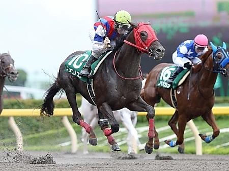 【競馬】第33回フェブラリーステークス(GⅠ) part6
