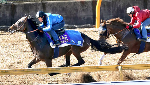 【競馬】ドゥラメンテ陣営「デブデブ(517キロ +33)だけど無理に絞らない」