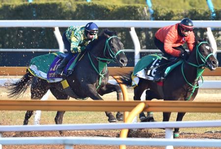 【競馬】デムーロがリオンを大絶賛!「こんなに強い3歳馬に乗った事がない」