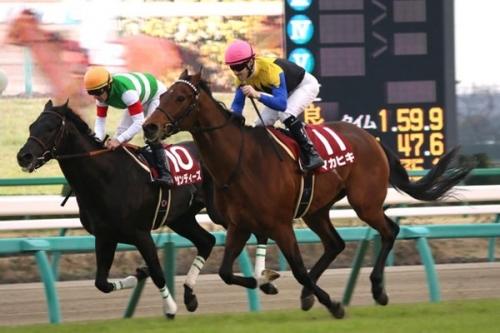 【競馬】マカヒキを任せてもいい日本人騎手