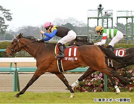 【競馬】弥生賞覇者マカヒキ 川田とのコンビで皐月賞へ