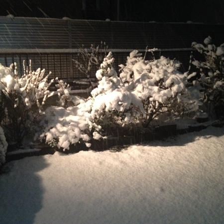 雪756wb